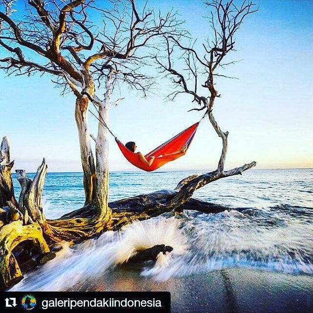 #Repost @galeripendakiindonesia with @repostapp  Terima kasih sudah berbagi keindahan alam #Indonesia  .   Photo by @ben_moon  Wisata Pantai Maui  . Repost #galeripendakiindonesia . #adventure #indomountain #hammock #travel #mountains #instatravel #wildernessculture #indotravellers #mountainesia #id_pendaki #travelgram #beach #instagunung #instagood #wanderlust #instapendaki #sky_captures #sky_perfection #nature #neverstopexploring #indonesia_photography #vscocam #landscape #hammocklife…