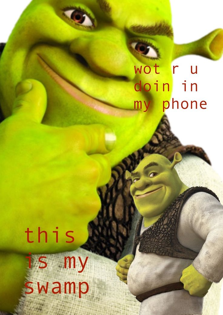 Homemade Shrek Lockscreen To Keep Ppl Out Of Ur Swamp