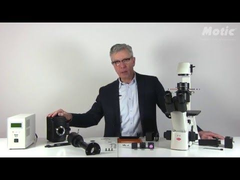 Discover how to setup the fluorescence attachment in our AE31E inverted microscope. By our product specialist Dr. Hans-Jürgen Klemenz. #Motic #Microscopes #Microscopy #AE31E #AE31ELITE #fluorescence