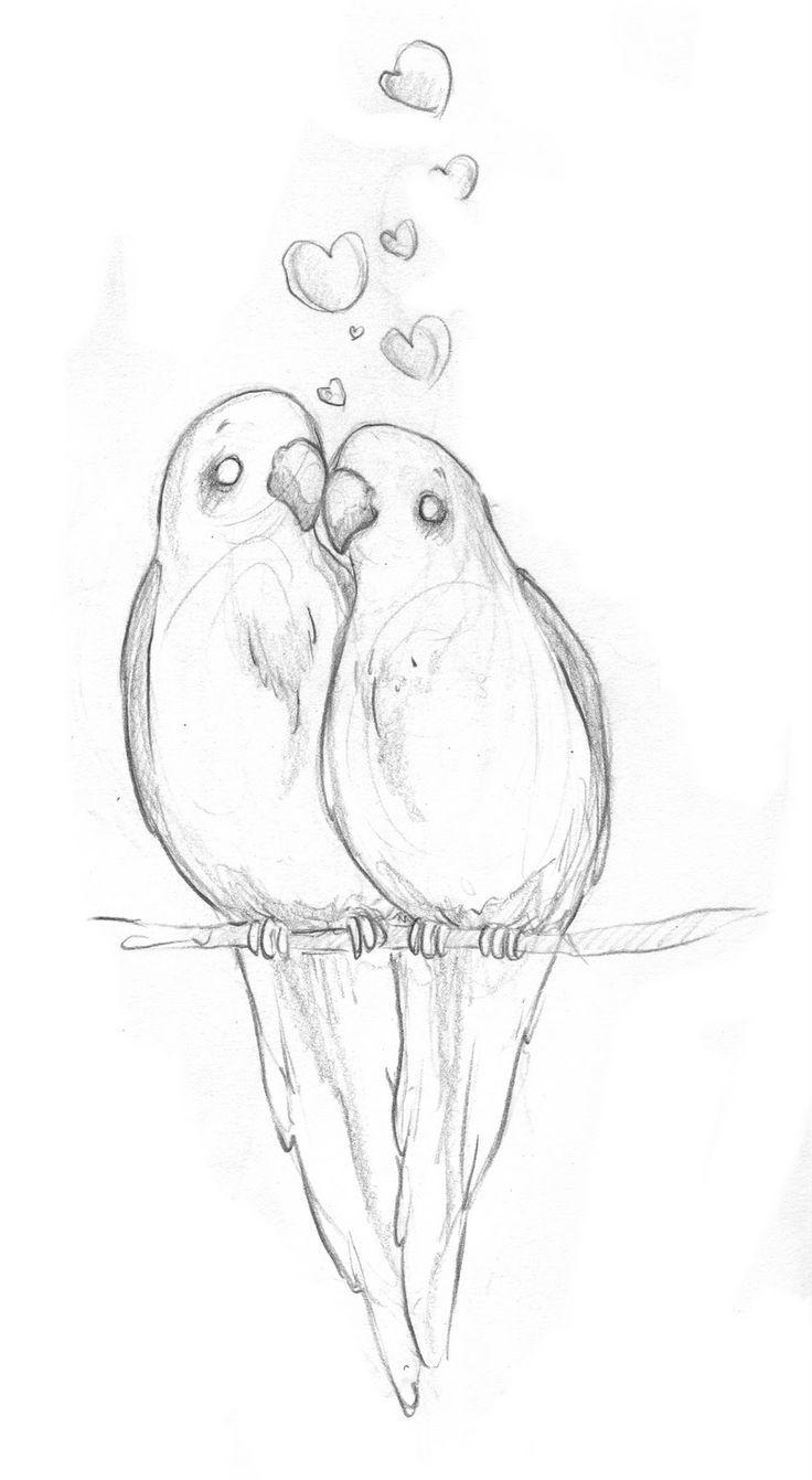 Love Bird Drawings In Pencil Sketch