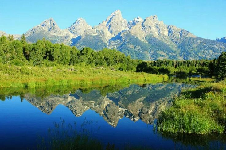 Grand Tetons Reflection / Diana Farmer