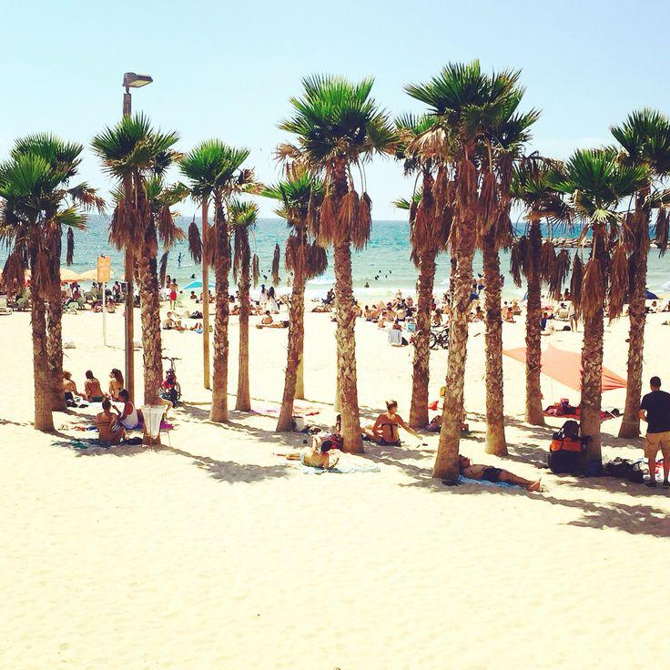 Gordon beach, Tel-Aviv