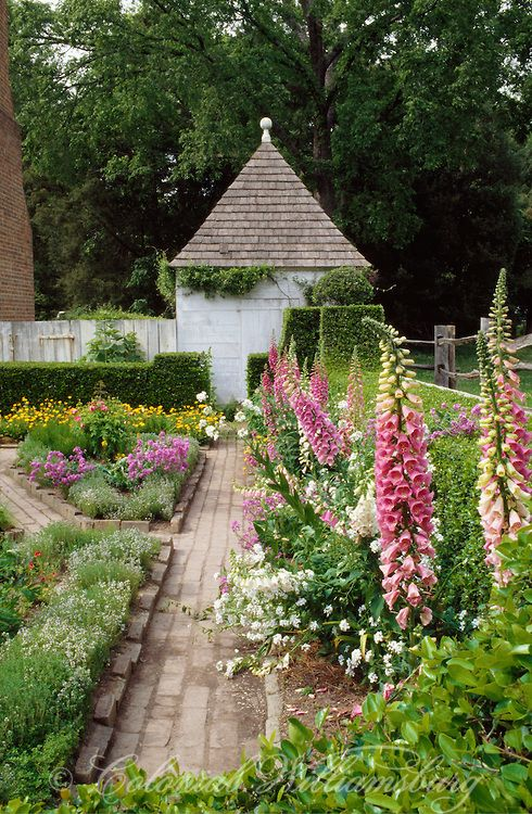 The John Blair House garden in summer, Williamsburg, Virginia: traditional garden with walkway and foxgloves, or digitalis