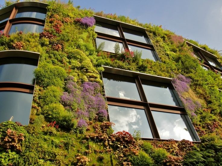 Знаете ли вы, что висячие сады - не вымысел, а вполне себе интересное архитектурное решение? https://vk.com/faqindecor?w=page-69527163_48442730