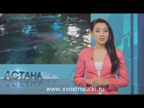 В Казахстане появилась настоящая русалка!