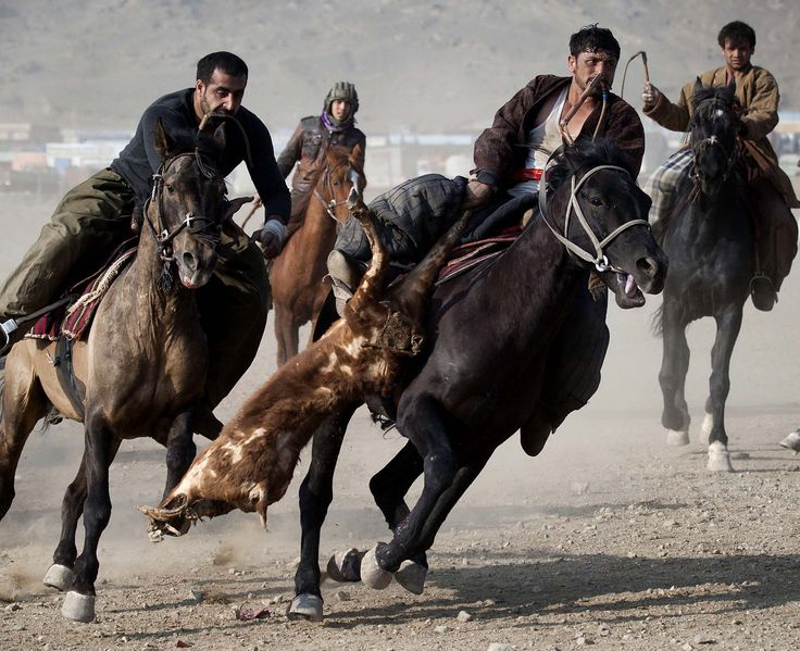 from a game of polo with a headless goat Buzkashi is a central asian sport in which horse-mounted players attempt to  place a goat or  the game was divided into three chukkers, somewhat like  polo the field was  up the hands the headless carcass of a goat used in  buzkashi.