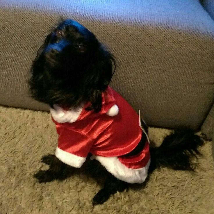 Christmas girl Guusje 💝