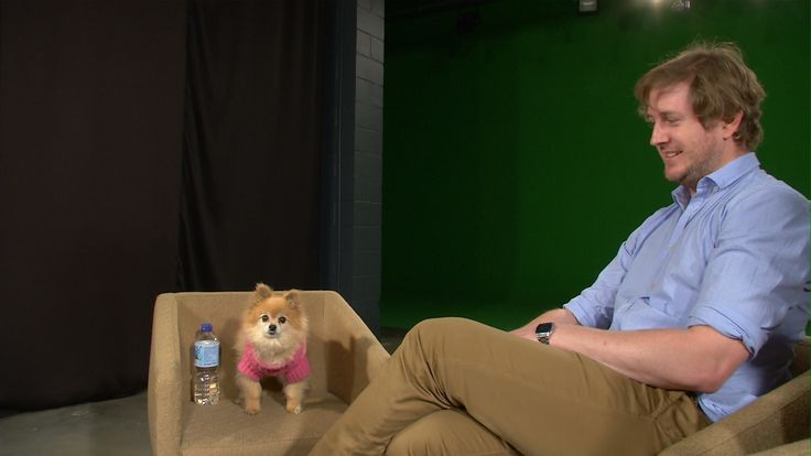 What it would look like to interview Mochi