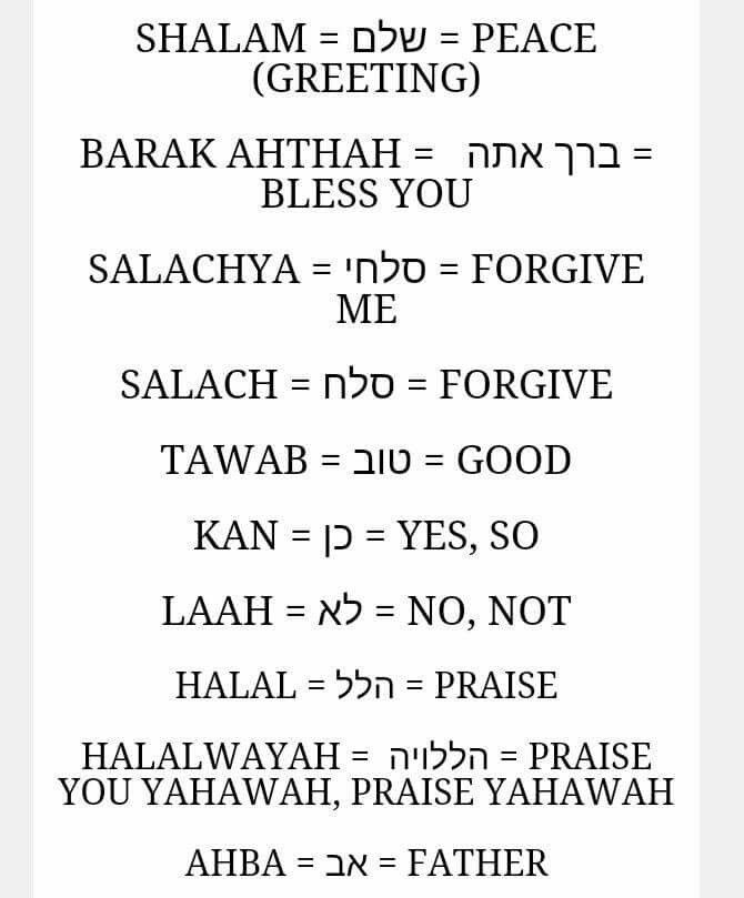 64 best belajar ibrani images on pinterest hebrew words languages ancient hebrew fandeluxe Choice Image