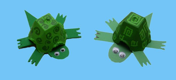Use an egg carton, green paint and green construction paper to create this turtle craft! And use our Field Guide to learn about some of the turtles in the Chesapeake Bay watershed: http://ow.ly/A4HlW
