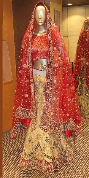 Adorable Beige Net Lehenga Choli With Dupatta.
