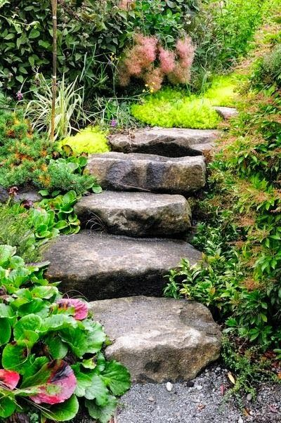 Beautiful Steps for backyard