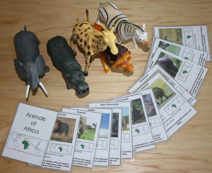 Animals of Africa (cards from the Montessori print shop)