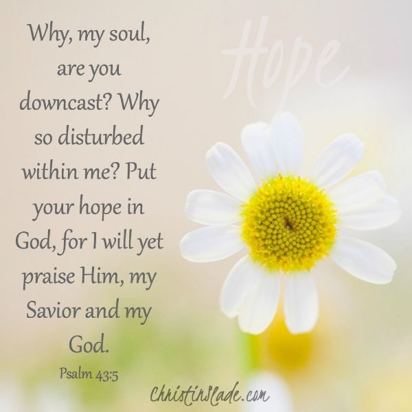 Why, my soul, are you downcast? Why so disturbed within me? Put your hope in God, for I will yet praise Him, my Savior and my God. -Psalm 43:5