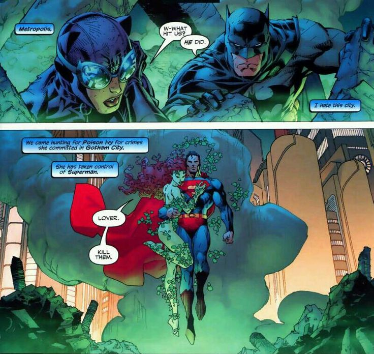 Batman and Catwoman vs. Superman and Poison Ivy