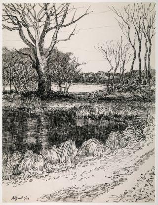 Bomenwal bij ven te Eext - Alfred Hafkenscheid - tekening 2006