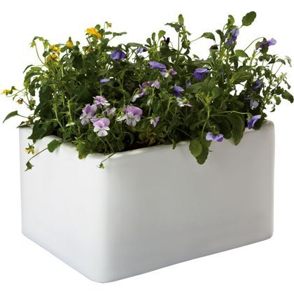 Belfast Sink Garden Planter - 36cm at Homebase -- Be inspired and make your house a home. Buy now.
