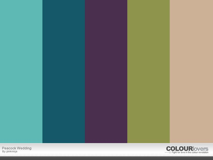 Peacock swatch: color inspiration