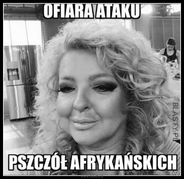 #śmieszne  #zabawne #humor #memy #demotywatory #obrazki