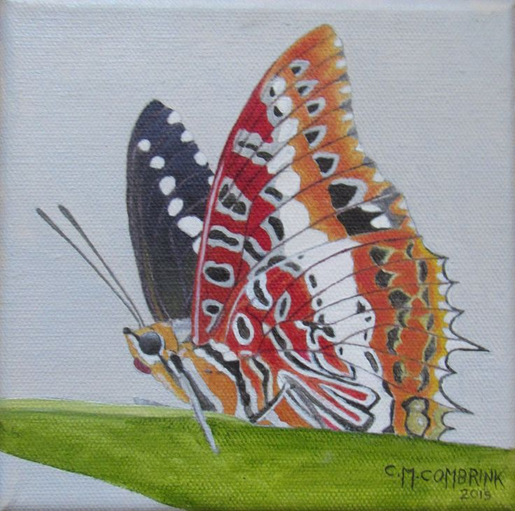 Butterfly on Leaf Oil Painting - Christiaan Combrink 2015
