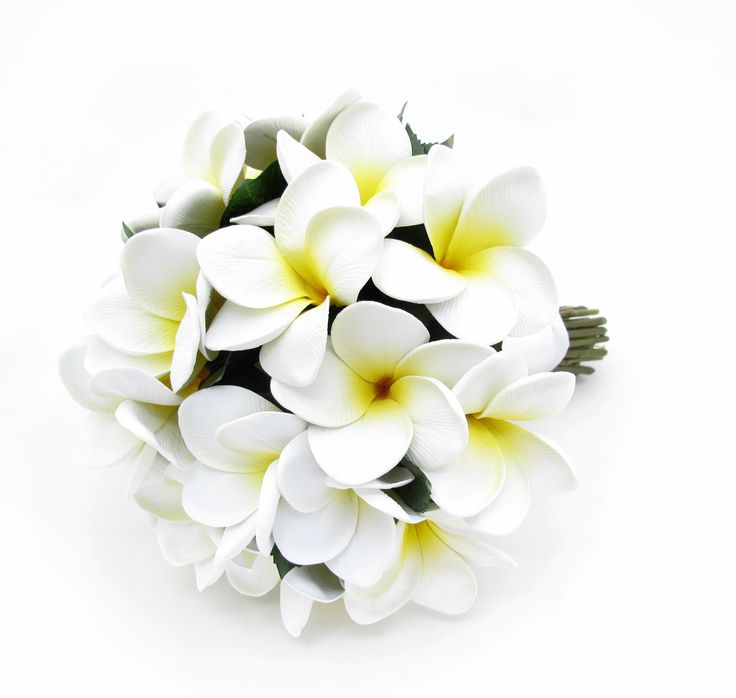 Set of a yellow/white frangipani bouquet and FREE matching buttonhole. Sale price is only $25 for the set - a massive discount as RRP is $106.50. One set only - contact info@loveflowers.com.au to grab it.   Height 26cm, diameter 21cm. Buttonhole: http://www.pinterest.com/pin/151926187405597678/