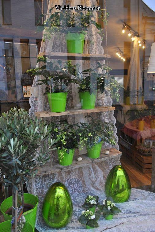 Grön avdelning hos Världens Blommor i Landskrona www.varldensblommor.se 0418651159