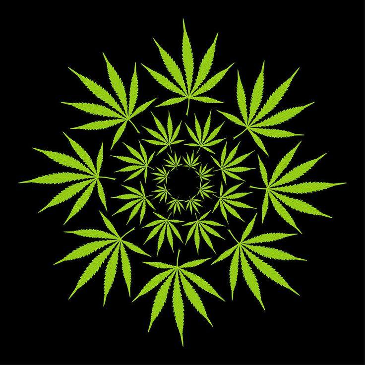 Cannabis Leaf Circle Digital Art by Image Zone