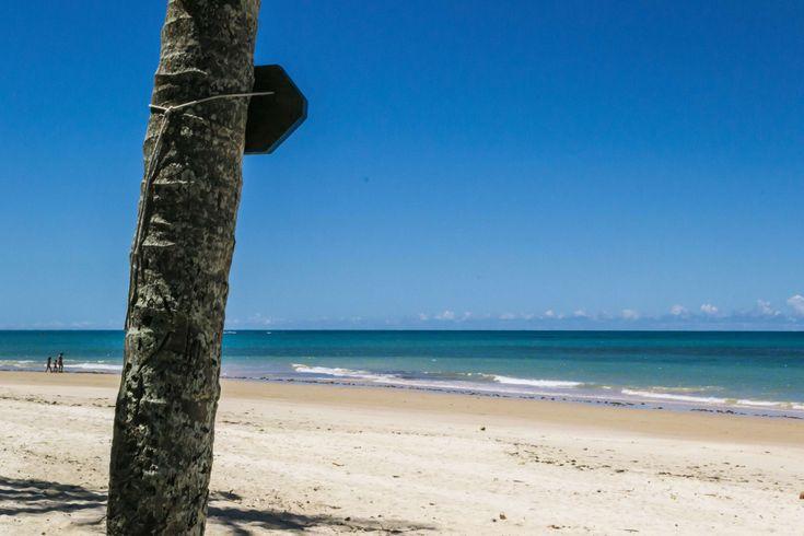 #bahia #beach #blue sky #brasil #brazil #ocean #trancoso