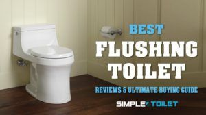 Meet the best flushing Toilet at present with all the bells and whistles a flushing toilet should have. It is designed with durable and sturdy ceramic material. The design is apparently sleek and stylish that can suit any types of modern toilet. This flushing toilet is super comfortable with soft closing seat and durable stainless steel seat hinge.