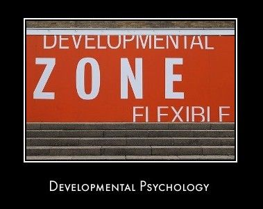 Developmental And Child Psychology what is a good essay writing site