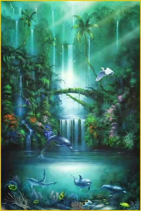 Images Of Waterfalls And Flowers Waterfall Dolphins
