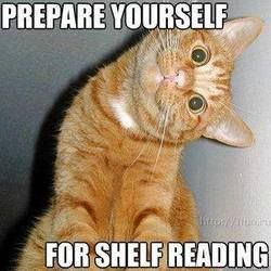 Prepare yourself for shelf reading. Oh my aching neck! #libraries #humor