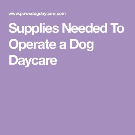 Supplies Needed To Operate a Dog Daycare