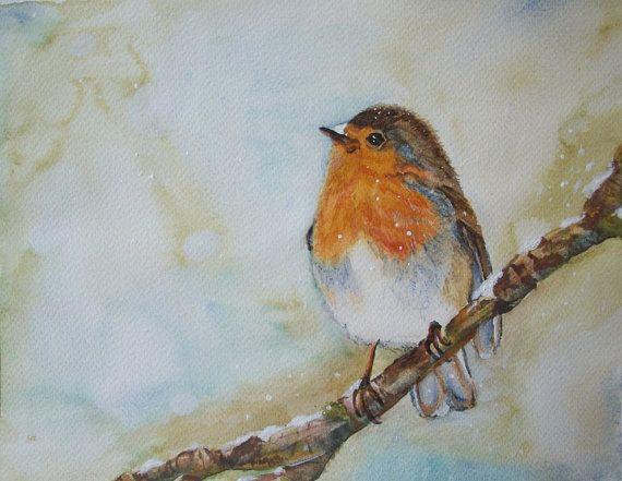 uccello pettirosso acquerello dipinto originale di Stellangelo