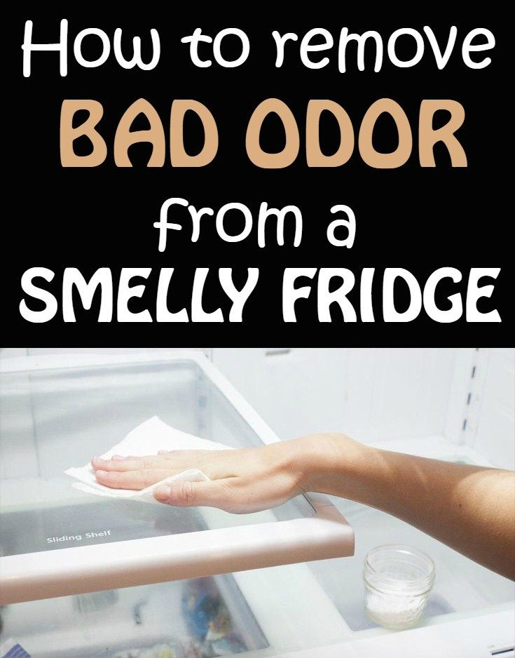 No matter how well you cleaned and washed it inside, your refrigerator smells unpleasant. Don't worry! Natural products will help if the commercial ones failed. Here are six tricks to try. 1. Baking soda One of the most inexpensive and effective remedies against the refrigerator's smell is baking soda. You can use it to clean …