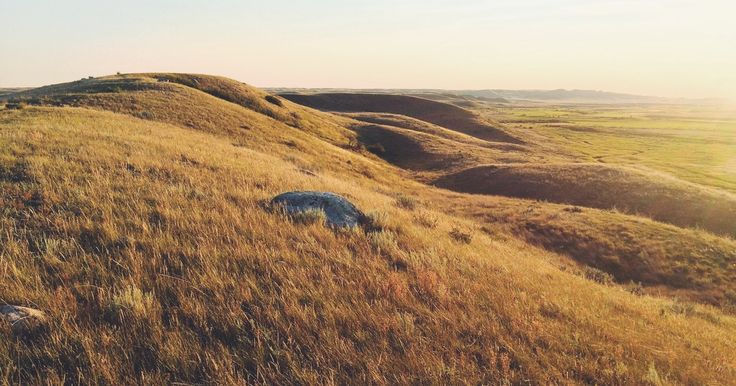 Drive the Eco-Tour Road in Grasslands National Park