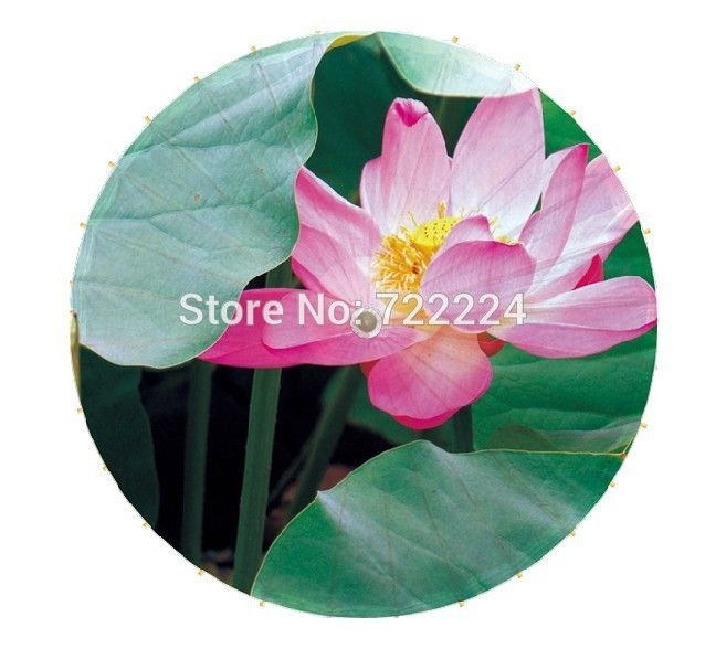 27.46$  Buy here - http://alio39.shopchina.info/go.php?t=32471272468 - Free shipping Dia 84cm long-handled real lotus picture traditional handmade waterproof dance decoration oiled paper umbrella  #buyonline