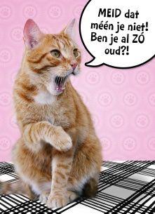 Verjaardagskaart vrouw - meid-dat-meen-je-niet