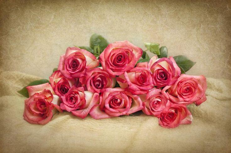 Romantik+Gül+Resmi