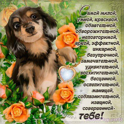 Розы рисунок, открытка ты красива и умна
