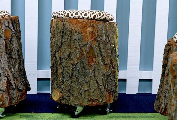 Use designer kenneth wingard s instructions to turn tree for Tree trunk uses