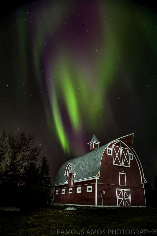 Northern Lights - Famous Amos Photography Near Grande Prairie, Alberta, Canada