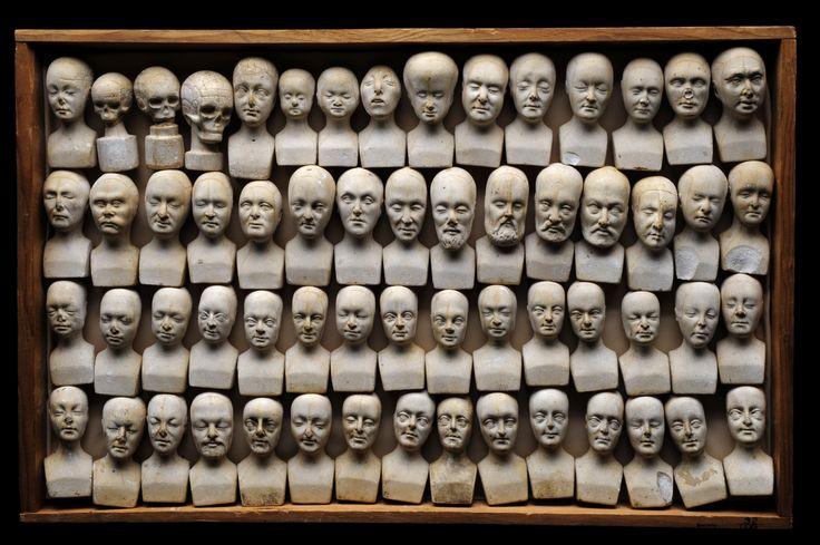 Lots of Phrenologic Heads
