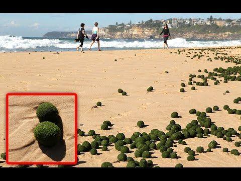 UFO Balls Surfaced On Sydney Beach - September 2014