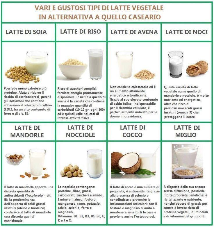 Latte vegetale ToFU e formaggi VEG con estrattore Greenis