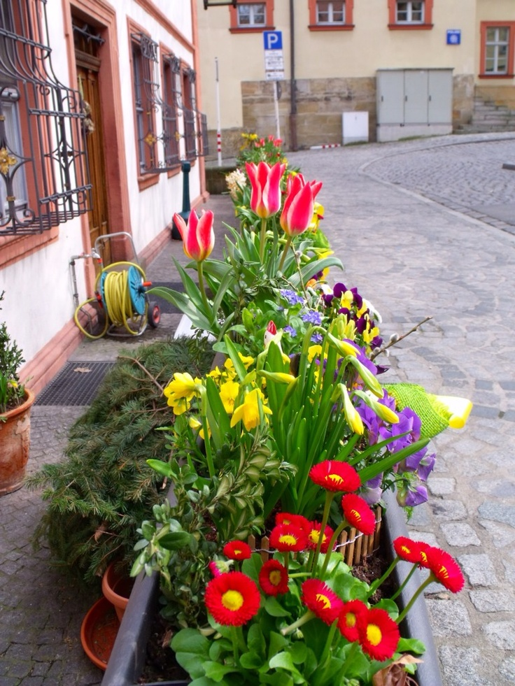 Planter Box Flower Garden In Bamberg Germany Garden