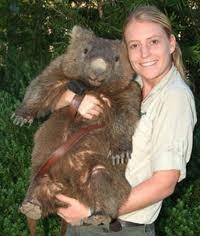 wombat!  Bigger than koalas!