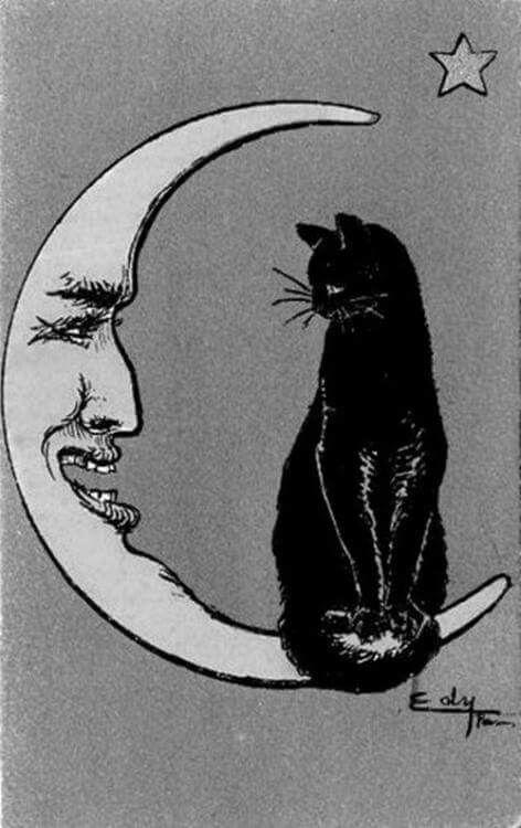 Black cat sitting on an anthropomorphic moon