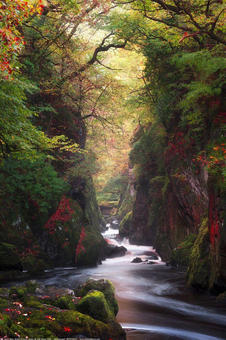 The Fairy Glen Betws Y Coed Snowdonia Wales - Fairy Glen, Betws Y Coed, Snowdonia, Wales