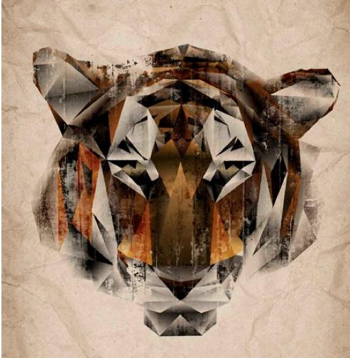 tiger #geometric